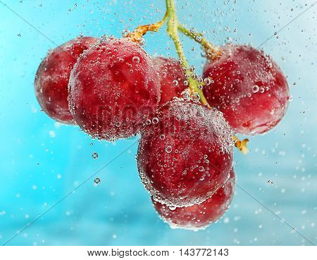Grapes in a water on color background