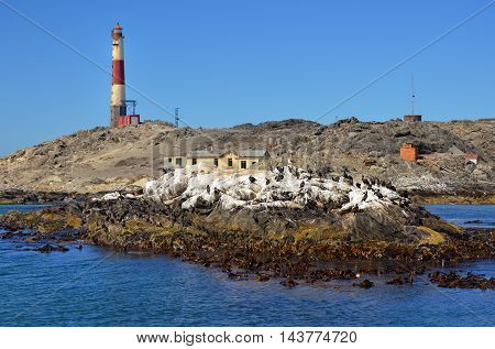 Rocky shore and lighthouse in the Luderitz harbor Namibia Africa