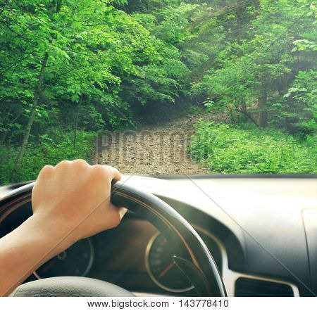Male hand on car steering wheel. View from car windshield to road and green forest.