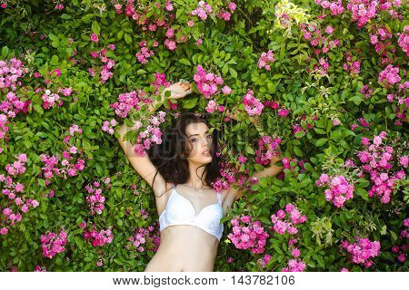 young sexy woman with makeup on pretty face and long brunette hair near rose flower bush pink and green color outdoor in white bra closeup