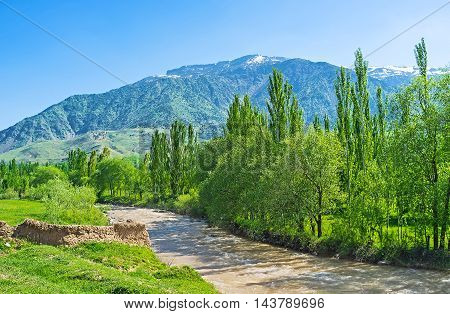 The banks of Kyzyl Darya river are covered with greenery Qashqadaryo Region Uzbekistan.