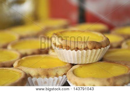 Egg tarts on display at a bakery.