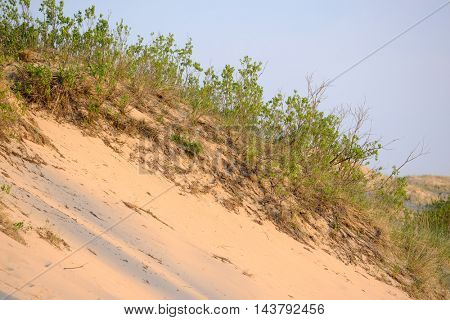 Big Sable Point Dunes, Michigan, USA