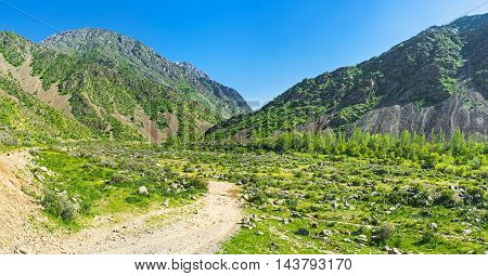 The dusty path leads to the winding Zarmas gorge in Gissar Range of Pamir-Alay mountains the territory of Gissar Nature Reserve Qashqadaryo Region Uzbekistan.