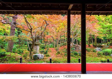 Enkoji Temple With Japanese Autumn Garden
