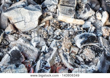 Closeup of decaying wood coals and ash in brazier, top view