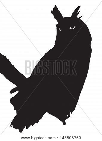 Silhouette of the owl sitting on a branch, predatory bird, vector design