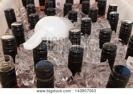 Closeup of bottles of wine getting cool in ice cubes.