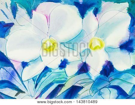 Abstract watercolor original painting white color of orchid flowers and green leaves in blue color background.