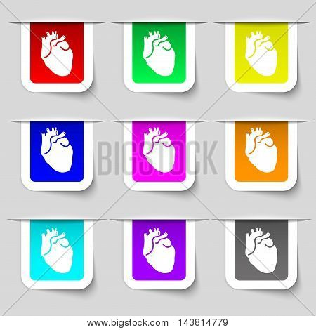 Human Heart Icon Sign. Set Of Multicolored Modern Labels For Your Design. Vector