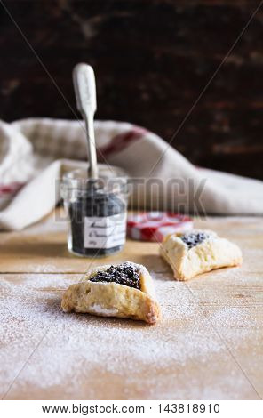 Hamantaschen cookies with poppy seed and dried fruits filling and icing sugar on a plate, cooked for Jewish festival of Purim, selective focus
