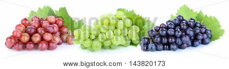 Grapes Red Green Blue Fruits Fruit Isolated On White