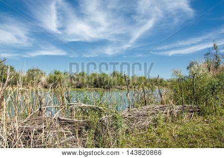 steppe prairie veld veldt. Crimea the southern Russian steppes the Kazakh steppes and western Siberia.