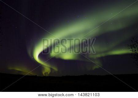 Magnificent aurora borealis in autumn night above field