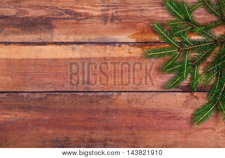 Sprig Of Christmas Trees On The Boards