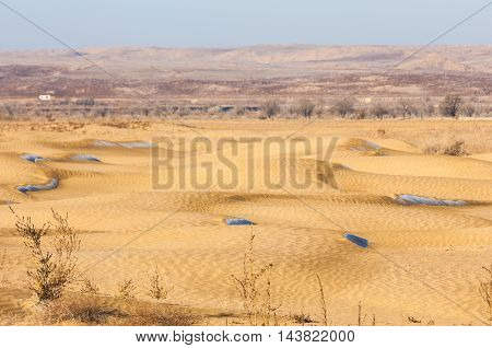 Steppe, in the floodplain of the river, in the winter season. Treeless, poor moisture and generally flat area with grassy vegetation in the Dry Zone.
