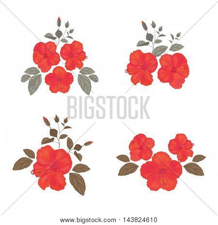 Set of  Hibiscus for your Design. Collection of Flower and Leafs for Greeting Card, Invitation, Wedding, Decoration.