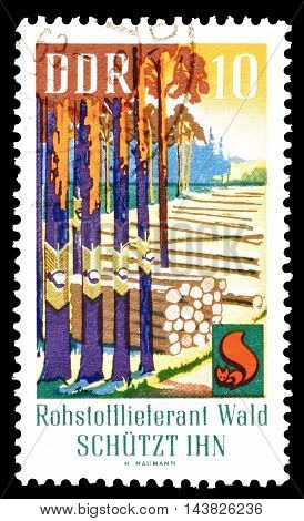 GERMAN DEMOCRATIC REPUBLIC - CIRCA 1969 : Cancelled postage stamp printed by German Democratic Republic, that shows forest.