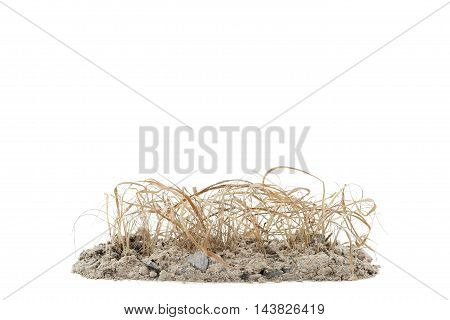 plant and dry grass on pile soil isolated on white background