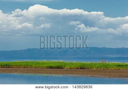 River In Steppe. Prairie