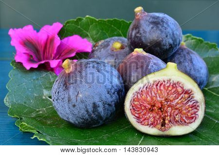 Blue figs on a leaf and pink flower fig cross section close up side view