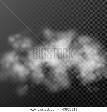 Translucent smoke cloud on transparent background. Vector hot air steam dispersion effect