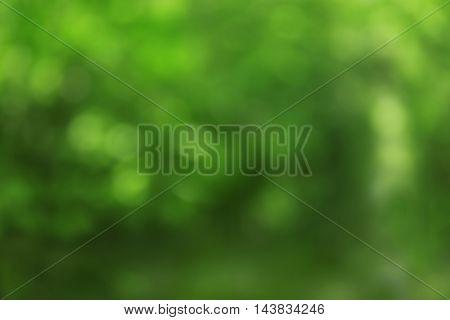 Defocused bokeh of garden background