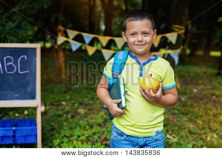 little boy goes to school. The concept of training and education