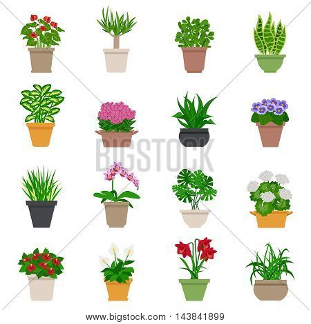 Houseplant icons set with plants and flowers flat isolated vector illustration