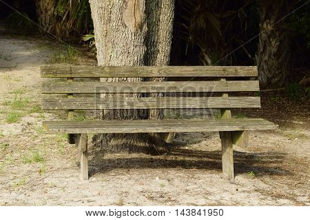 Weathered wooden bench in a park in Florida