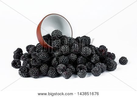 Black Raspberry Cumberland isolated on white background