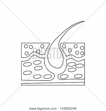 Hair growth icon in outline style isolated on white background