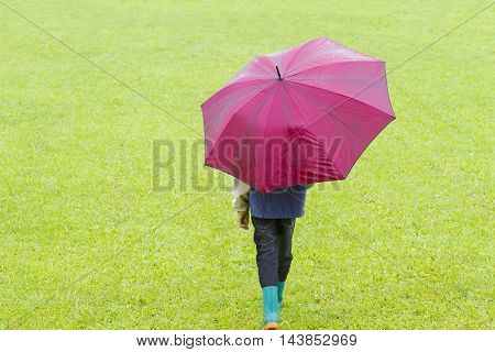 Little boy holding a umbrella in the rain. Back view