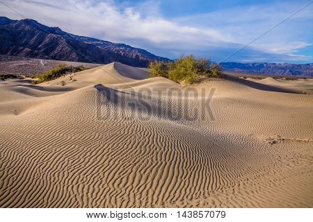 Rippled sand dunes and mountains in mid morning light at Stovepipe Wells Death Valley National Park California USA