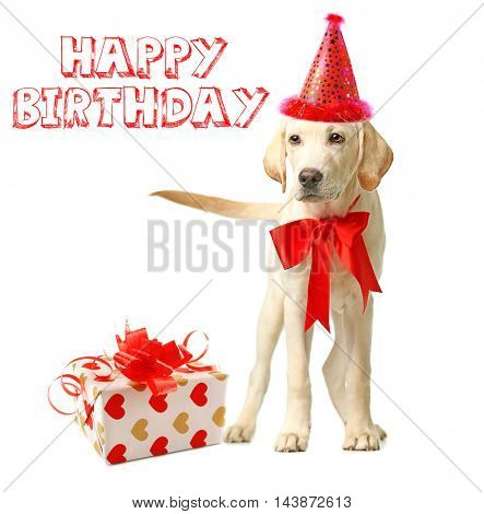 Beautiful Labrador retriever with gift box, red bow and party hat isolated on white background