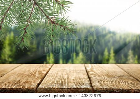 Wooden table on blurred forest background.