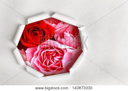 Torn paper  with flowers background.