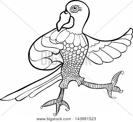 Coloring With A Proud Caribbean Parrot Dancing. Vector Illustration
