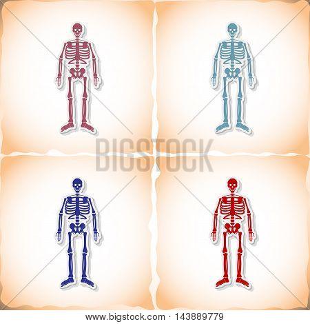 Skeleton. Abstract image Medicine object. Vector illustration.