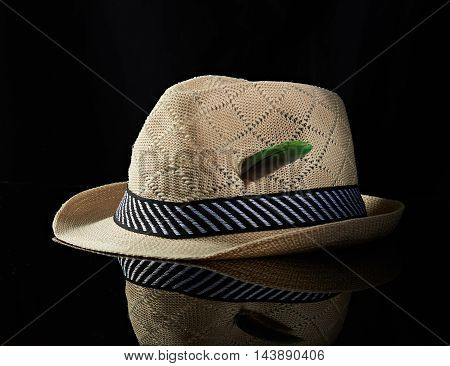 Hat With Green Feather