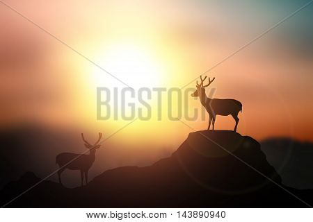 Silhouette of deer with rocky cave on the sunset background