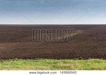Field Plowed, Sown Cereals.