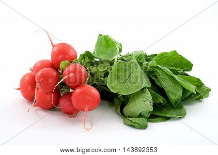 Red fresh radish with green leaves on white background