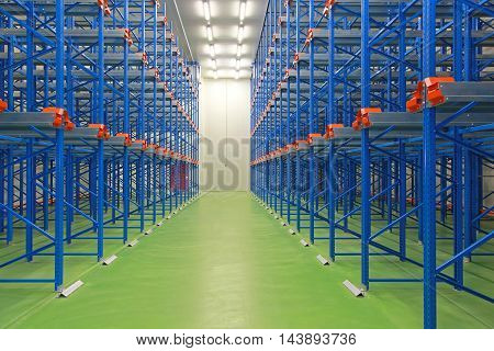 Empty Blue Shelving System in New Warehouse