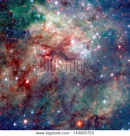 Tarantula Nebula Is The Region In The Large Magellanic Cloud.