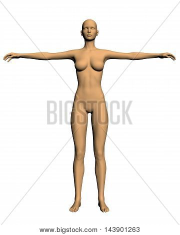 Realistic girl in a pose with arms raised. Polygonal skin girl. Vector illustration of a girl. 3D girl vector. Naked girl. EPS 8. Medical examination of the girl.