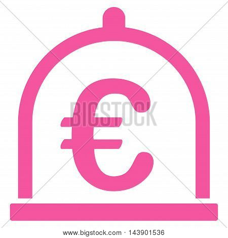 Euro Storage icon. Vector style is flat iconic symbol with rounded angles, pink color, white background.
