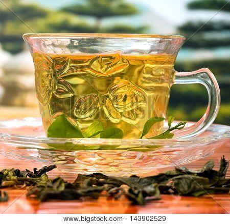 Green China Tea Represents Drinking Beverage And Refreshing