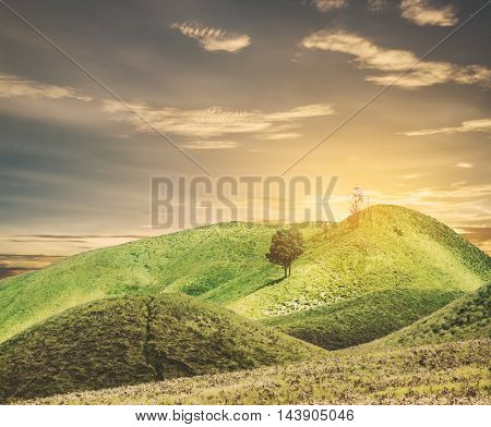 Grassland hills with blue sky in sunset