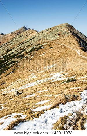 Footpath leading up the peak Chopok Low Tatras Slovak republic. Hiking theme. Beautiful place. Seasonal mountains scene. Vertical composition.
